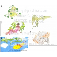 Designs: a) Fairy Ivy, b) Fairy Calladium, c) Kite Flying, d) Dragon, e) Pegasus